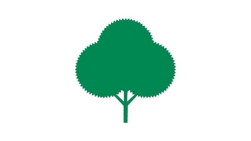 Zion logo bush